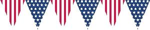 BANDERIN: BANDERA USA