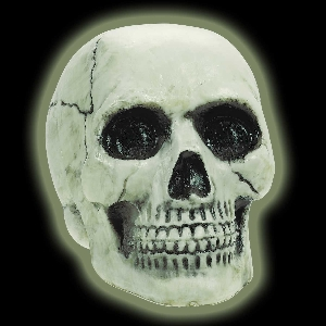 SKULL GLOW IN THE DARK HALLOWN