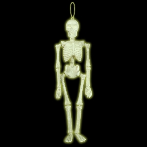 SKELETON GLOW IN THE DARK HNG