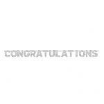 Banderin Congratulations Foil Letter2m x 15.8cm