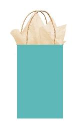 Bolsa papel Robin's Egg Blue Gift 21cm x 13cm x 9cm