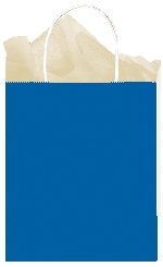 Bolsa papel Bright Royal Blue Gift 25cm x 20cm x 10cm