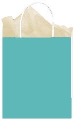 Bolsa papel Robin's Egg Blue Gift 25cm x 20cm x 10cm