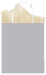 Bolsa SilverMedium Paper