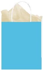 Bolsa Caribbean BlueMedium Paper