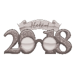 GLASSES GLITTER 2018 NY SLVR