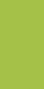 Bolsa Papel:kiwi