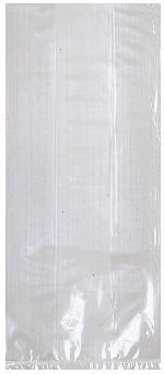 Bolsa Clear Small Plastic 24cm h x 10cm w
