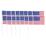 Pinchos USA Flags Food Picks 0