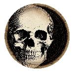 Plato papel 23cm BONEYARD