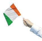 PPP IRL WAVING FLAGS 30CMX45CM