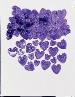 Confeti Lv Hrts purp 14g emb