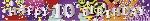 Banderin 2.7m HoloG Hapy 10th BD