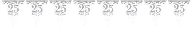 Banderines Aniversario de Boda 25 Años Plateado Sparkling 4m