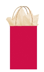 Bolsa papel Apple Red Gift 21cm x 13cm x 9cm