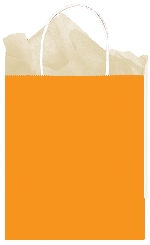 Bolsa papel Orange Medium Gift